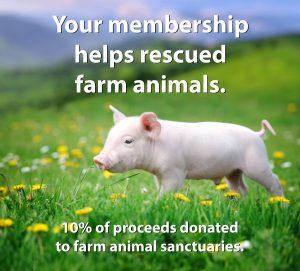 vegan charity