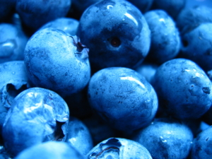 Credible Nutrition Sources - Blueberries