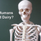Do Humans Need Dairy